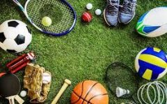A variety of sports will be offered throughout the year.